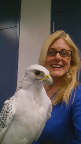 Mary Kelly kidnapping the Air Force Falcon!  Go+Navy!  Beat Air Force!