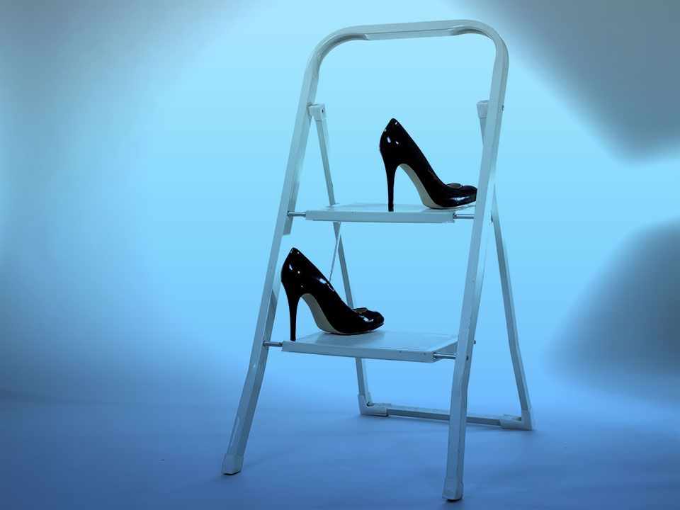 Corporate Ladder Woman