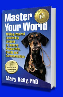 Master Your World Book Cover