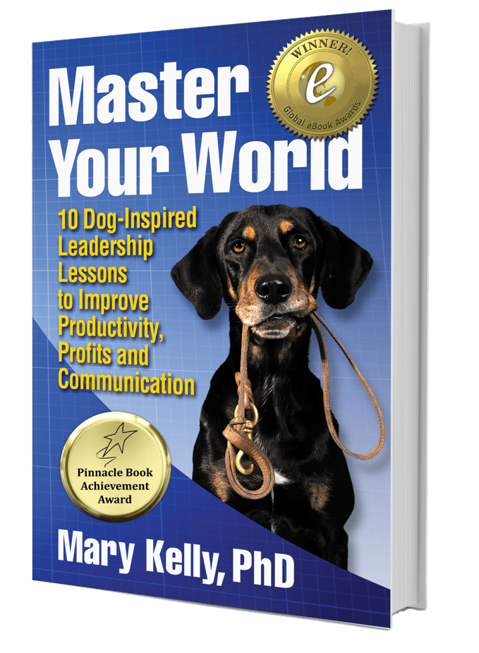 Master Your World Book by Mary Kelly